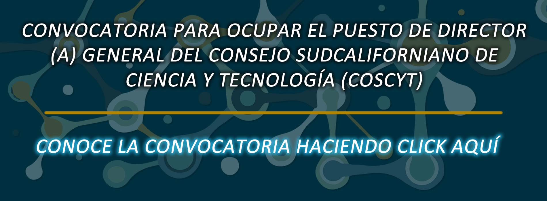 ConvocatoriaDireccionCOSCYT