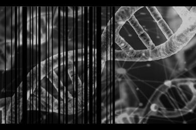 Reconocimiento de secuencias genéticas de ADN a través de imágenes Share