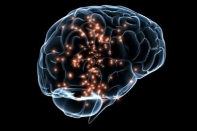 Una hormona presente en la maternidad tiene efecto protector en el cerebro